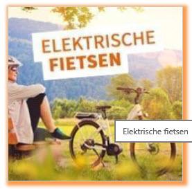 Elektrische-stadsfiets